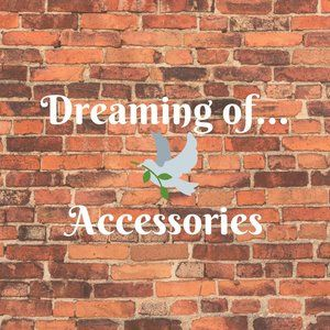 Dreaming of Accessories